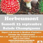 baladechampignons230917.jpg