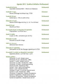 Agenda 2015 du SI.jpg