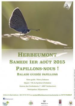 Balade papillons 2015.jpg